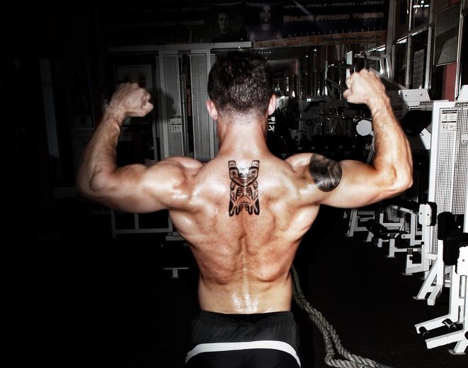 【写真で解説】背中の筋トレが苦手な人はまず構造を理解しよう