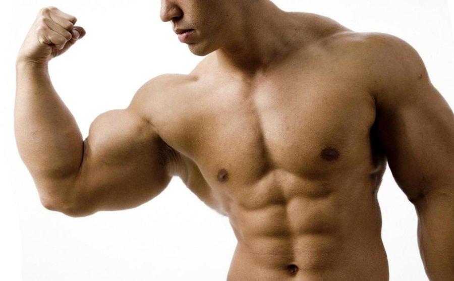 essential_muscle_by_n_o_n_a_m_e-d33a2g6