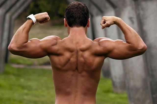 【必見】上腕二頭筋のピークを作る7つの方法