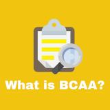 研究で証明された、BCAAの筋トレへの効果6つを解説