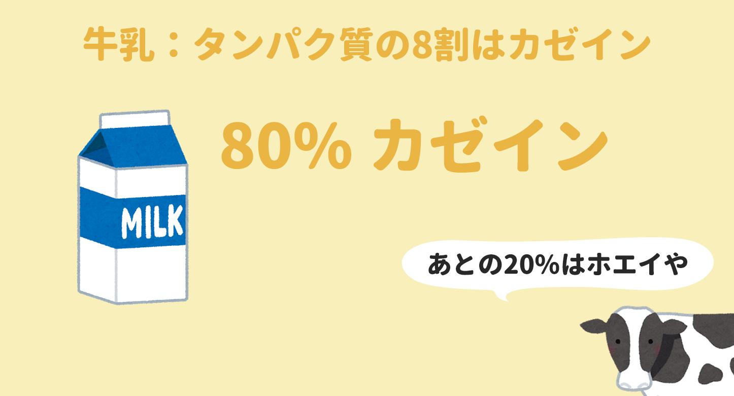 牛乳に含まれるタンパク質の8割はカゼイン